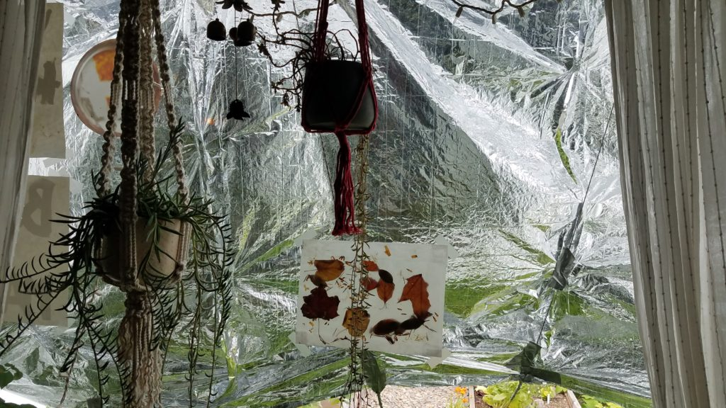 View from the inside of the window showing hanging plants, art work, and the mylar heat shield. Paracord is duct taped to the blakent to keep it off of the window and in position.